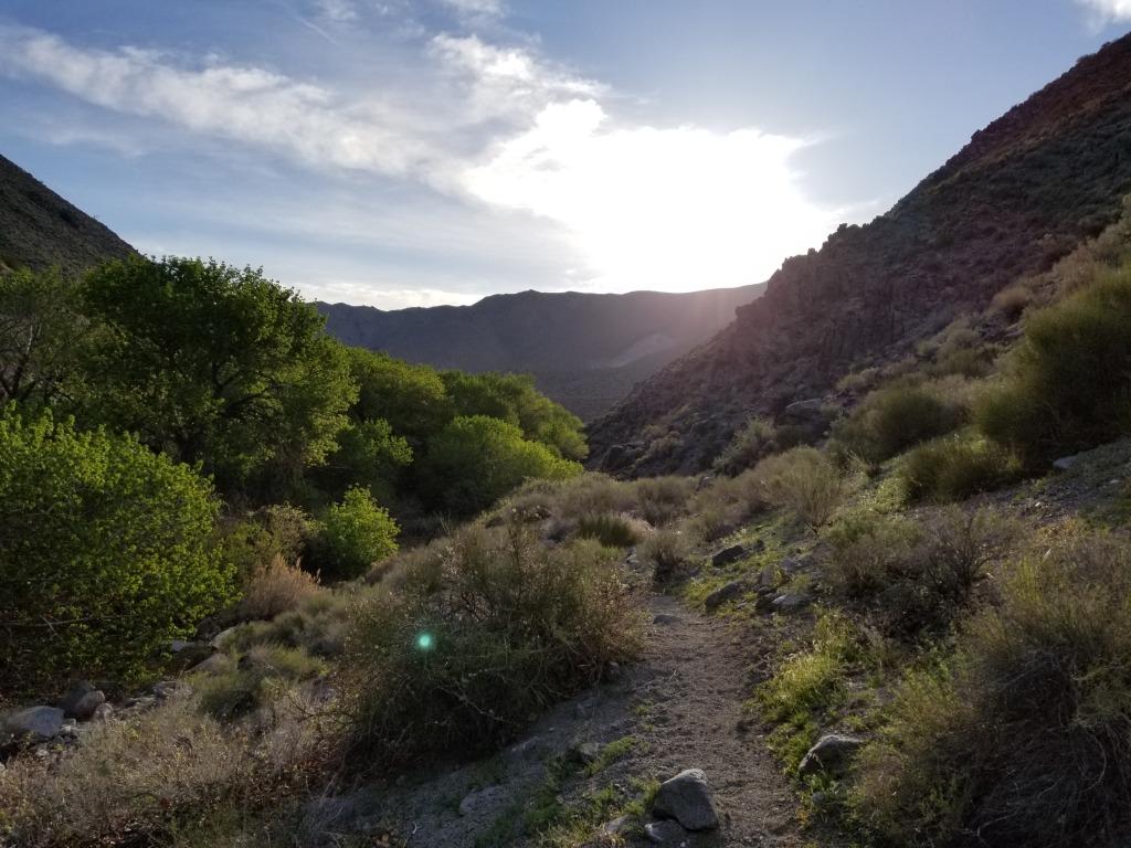 Death Valley 2018 Campsite