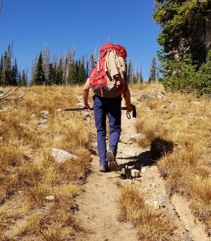Colorado Hank Backpacking 2018