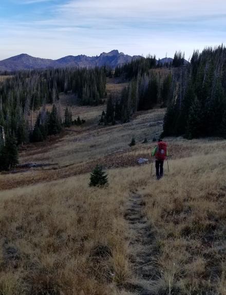 Colorado Morning Hike 2018