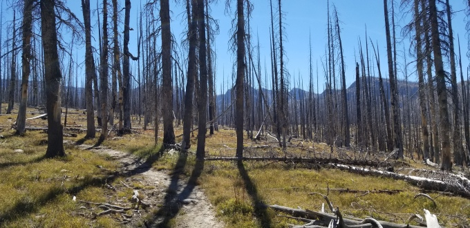 Colorado North Lake trail 2018